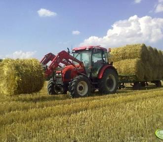 Apel krotoszyńskiego biura WIR o pomoc rolnikom z Wielkopolski i Podlasia w zaopatrzeniu w słomę