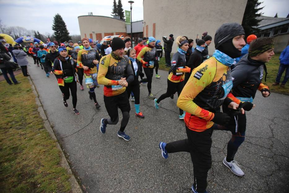 Śląski Maraton Noworoczny Cyborg 2019 w Parku Śląskim