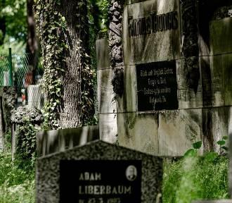 Wałbrzych nieznany. Cmentarz żydowski (ZDJĘCIA)