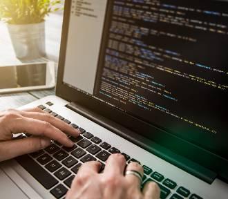 Zawód z przyszłością – wybierz programowanie