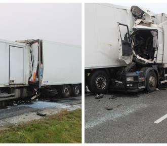 Zderzenie ciężarówek na autostradzie A1 pod Włocławkiem. Kierowca był zakleszczony [zdjęcia]