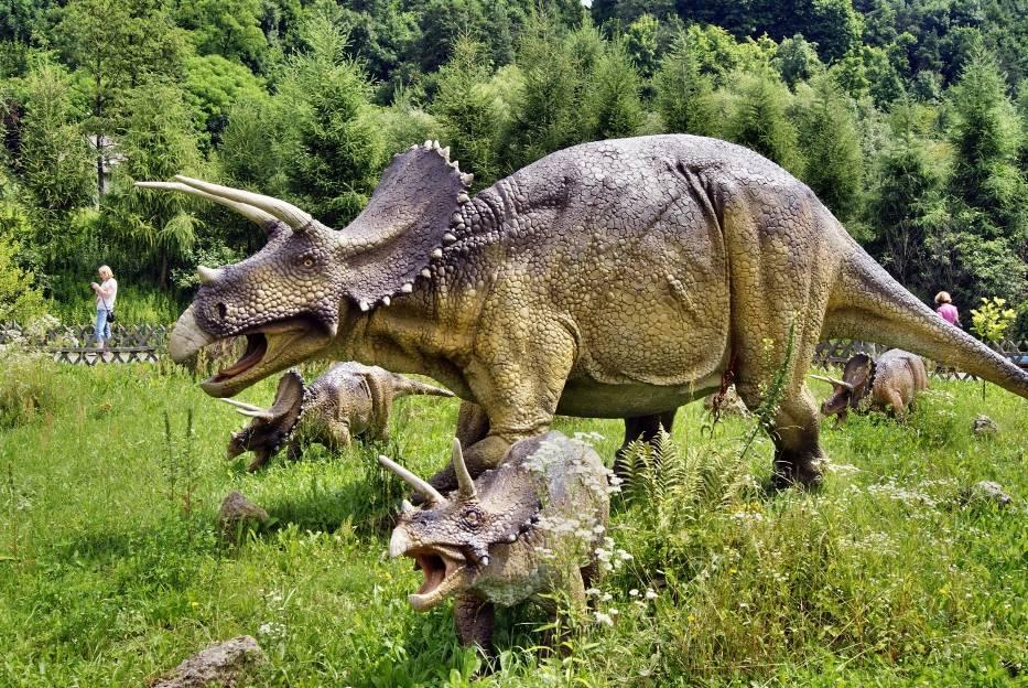Znalezione obrazy dla zapytania bałtów dinozaury galeria