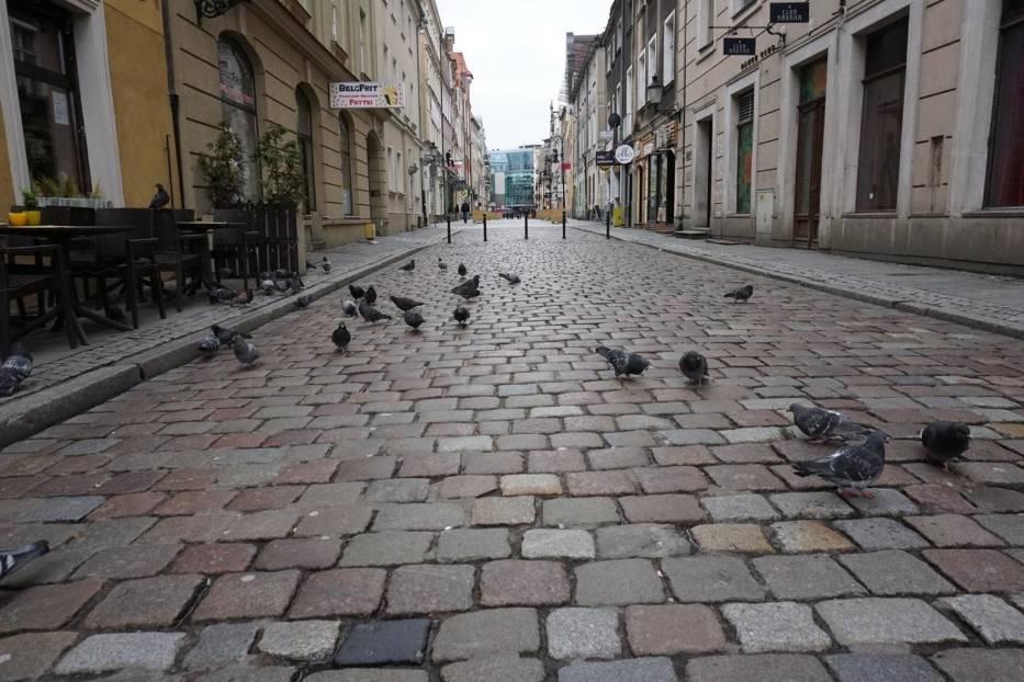 Na brak miejsc zielonych mogą też narzekać mieszkańcy Starego Miasta, gdzie mimo powstających skwerów zieleni, brakuje starych zadrzewień