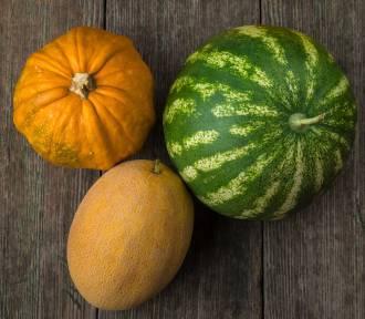 Dynia, arbuz i melon – poznaj rośliny dyniowate!