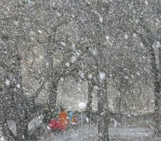 Tragiczne skutki burzy śnieżnej na Mazowszu. Nie żyje 6 osób