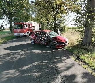 23-latka straciła panowanie nad pojazdem i uderzyła w drzewo