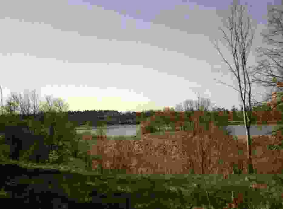 Widok na jezioro Świesz od Dworku