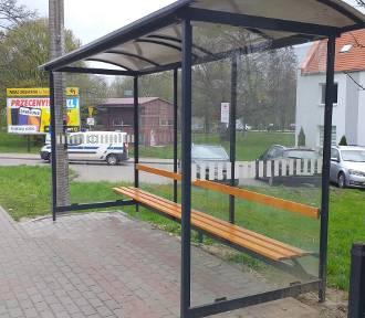 Chełmno. Nowe przystanki i dofinansowanie na komunikację dla powiatu świeckiego