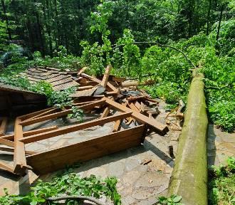 W Iwoniczu-Zdroju potężne drzewo runęło na altanę na trasie spacerowej [ZDJĘCIA]