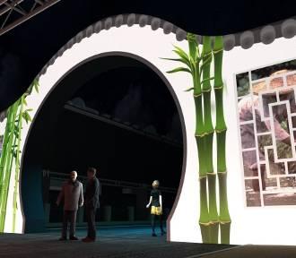 Oficjalny program festiwalu Skyway 2019