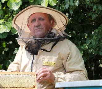 Pszczelarz roku mieszka w Augustowie. Hoduje kapryśne pszczoły