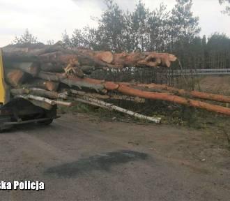 Ulicą Północną, koło komendy policji 42-latek tak wiózł drewno!