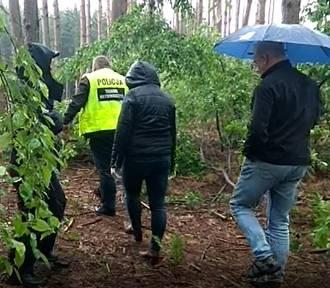 Śmierć mężczyzny w lesie. Sprawę bada prokuratura i policja