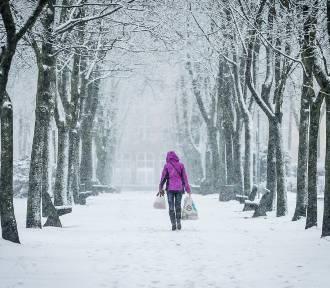 Pogoda na Nowy Rok dla Dolnego Śląska. Zamiecie śnieżne i trudne warunki na drodze