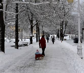 Krynica. Zima zawitała do uzdrowiska. Jest ponad 20 cm śniegu
