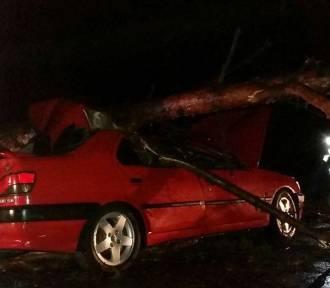 Gm. Zbąszyń:Drzewo spadło na samochód! [FOTO]