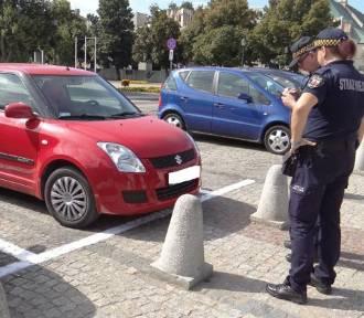 16 tysięcy złotych zysku z płatnej strefy parkowania w ciągu miesiąca