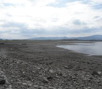 Jezioro Żywieckie zostanie odmulone