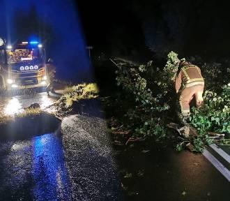 Niszczycielska siła burzy w regionie. Powalone drzewa, uszkodzone budynki [zdjęcia]