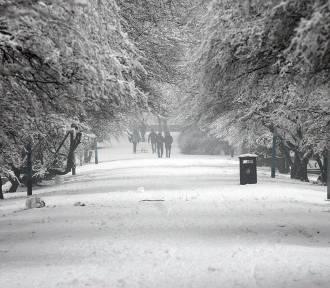 Pogoda na styczeń 2021. Wraca zima! Śnieg i mróz na dłużej w regionie