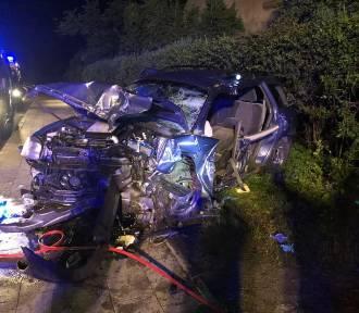 Wypadek na drodze krajowej nr 91 w Gręblinie, gm. Pelplin. Ranne dwie osoby [ZDJĘCIA]