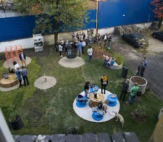 Znów zrewitalizują podwórko w Katowicach! Ruszył nabór zgłoszeń. To projekt Plac na glanc ZDJĘCIA
