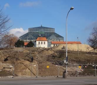 Modernizacja Winnego Wzgórza. Jak postępują prace? [ZDJĘCIA]