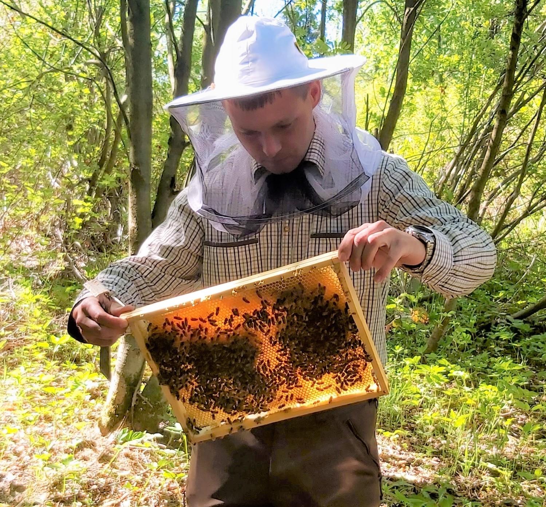 - Granice są po to, by je przekraczać i wyznaczać nowe – mówi podleśniczy Dominik Niemczyk, który opiekuje się rodzinami pszczelimi i przypomina, że pszczelarstwo miejskie jeszcze kilka lat temu też traktowane było jak ciekawostka