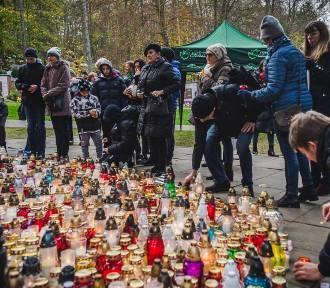 Czy cmentarze na Wszystkich Świętych będą zamknięte? Rząd wydał zalecenia