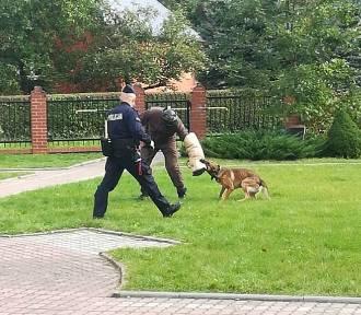 Policjanci w szkole w Wielkim Podlesiu rozmawiali o bezpieczeństwie