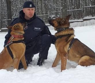 Oto najbardziej oddani funkcjonariusze policji z regionu. Zobaczcie zdjęcia!
