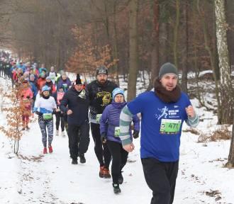 Bieg City Trail w Katowicach. 407 osób na starcie ZDJĘCIA, WYNIKI