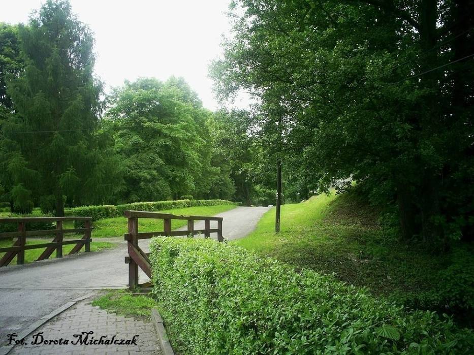 Do parku wchodzimy przez drewniany mostek od strony targowiska - ulicy 17 Stycznia