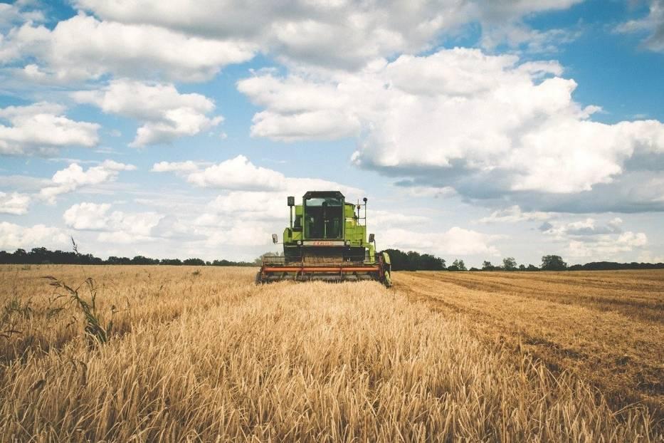 GUS i ARiMR dzielą się najnowszymi danymi o średnich cenach gruntów ornych w Polsce