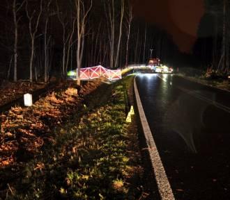 Policja: 27- latek stracił panowanie nad samochodem i uderzył w drzewo [ZDJĘCIA]