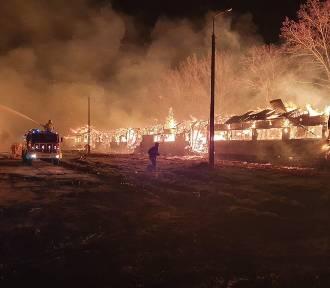 Pożar w gospodarstwie w Dąbrowie Łużyckiej. Złapano podejrzanego o podpalenie