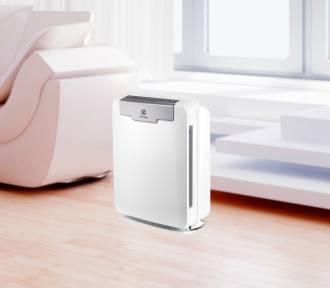 Czyste powietrze w domu - podstawa zdrowia