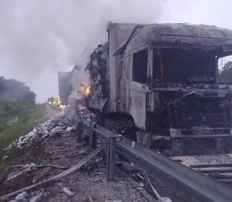 Pożar ciężarówki na S8 koło Zduńskiej Woli [zdjęcia]