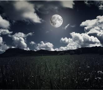 Kalendarz księżycowy ogrodnika na czerwiec 2020