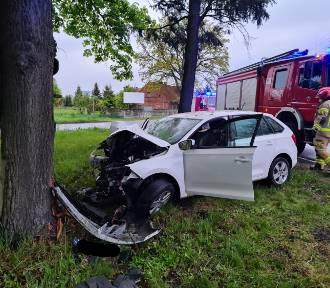 """Kierowca, który rozbił się o drzewo przy """"55"""", był pijany [ZDJĘCIA]"""