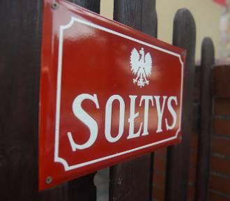 W gminie Dobroszyce i Bierutów wybiorą sołtysów. Znamy terminy spotkań
