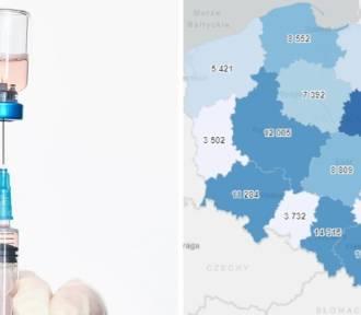Szczepienia przeciw COVID-19. Ile wykonano w twoim mieście?