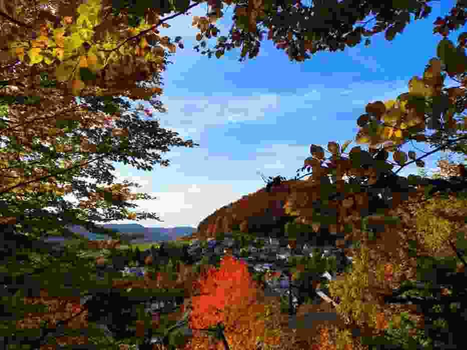 Pani Jesień krąży po świecie,szukając miejsca dla siebie