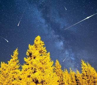 Gdzie i kiedy oglądać Perseidy, czyli spadające sierpniowe gwiazdy?