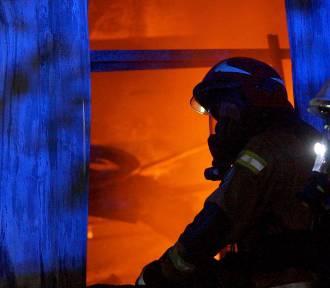 Pożar w Cekowie-Kolonii. Spłonęła lakiernia. Straty są ogromne. ZDJĘCIA