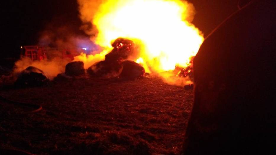 Czy na naszym terenie grasuje podpalacz? Mieszkańcy i strażacy ostrzegają