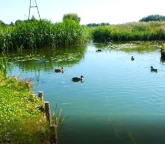 Skrzyżowanie rzek. Niezwykła atrakcja, którą stworzył człowiek