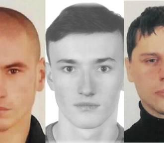Bocian, Diabeł i Amba to przestępcy poszukiwani przez policję w Zgorzelcu i okolicach