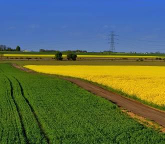 Polskie wsie najpiękniejsze na świecie? Te widoki zapierają dech w piersiach!