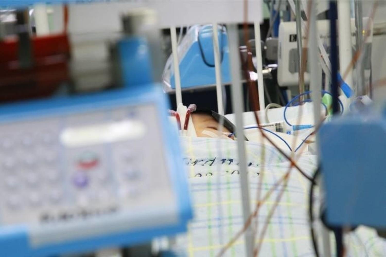 - Przy zastosowanej przez toruński szpital izolacji groźba przeniesienia bakterii na innych jest znikoma - mówi profesor